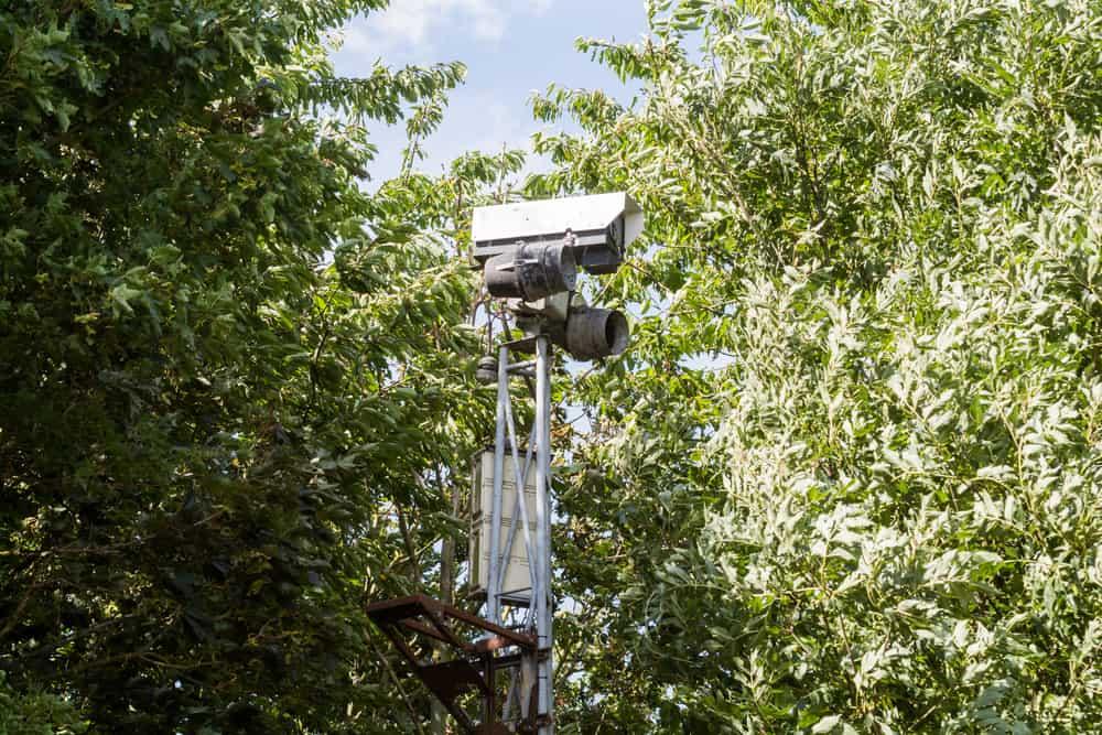 CCTV camera hidden behind trees recording video