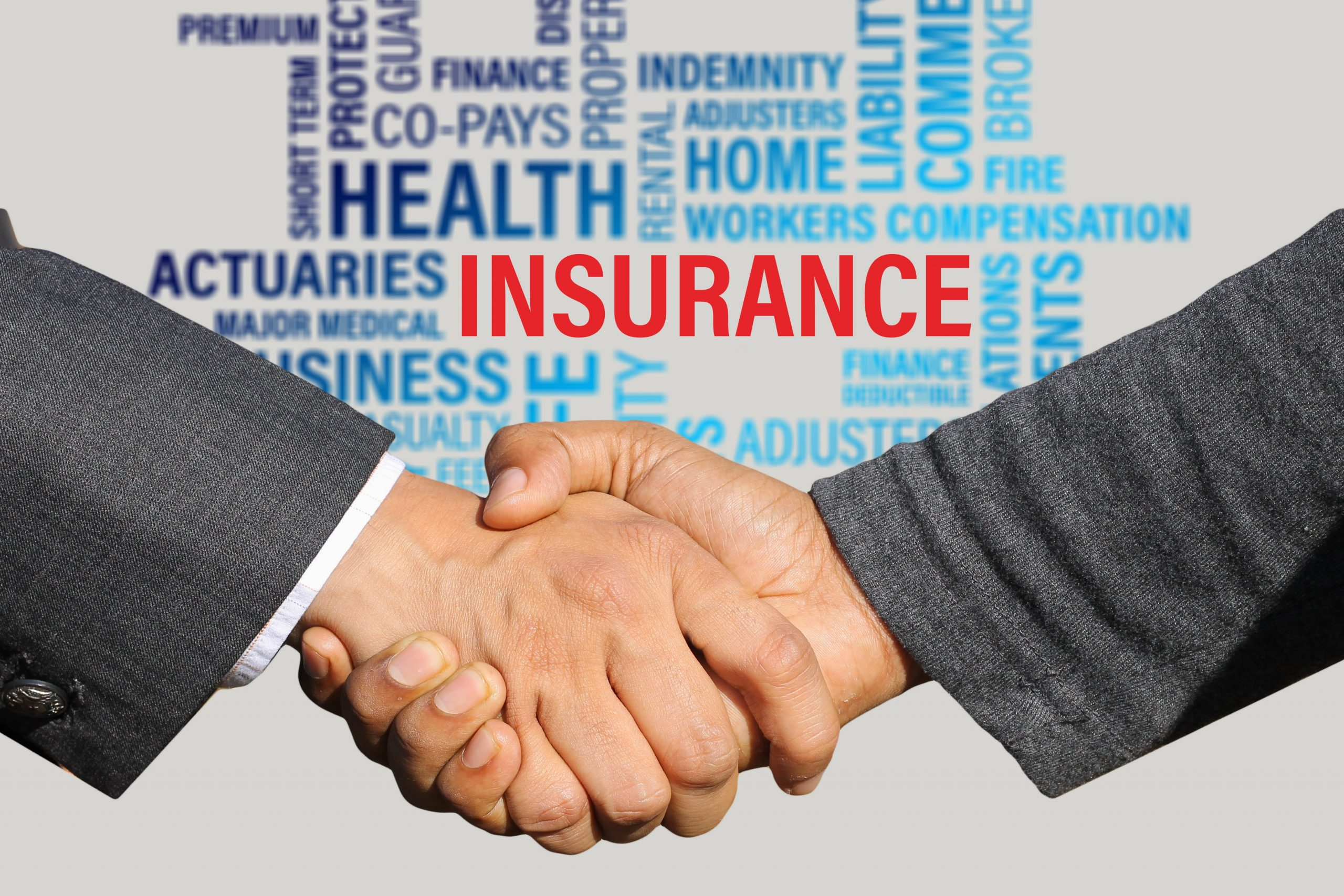Dishonesty Insurance Coverage
