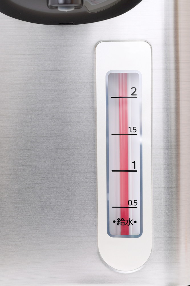 Water Thermostat