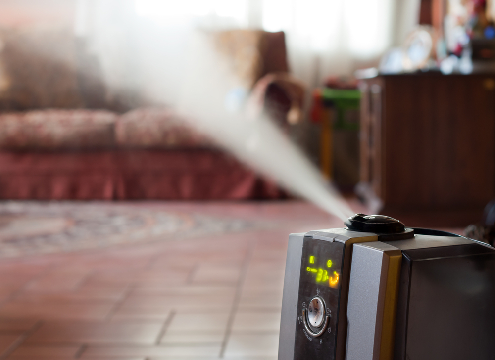 Humidifier with ionic air purifier inside a house
