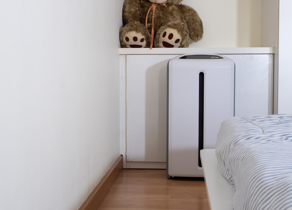Air Purifier In Bed Room